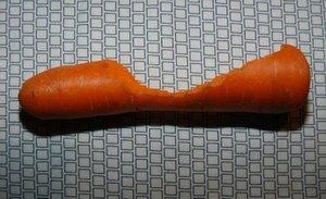 Dailybunny_carrotslipper